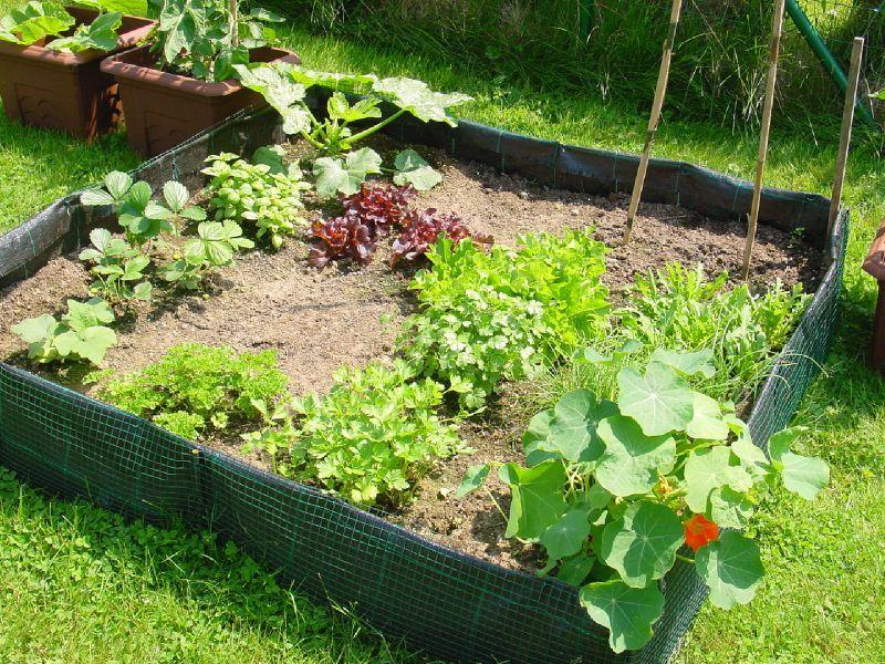 arrosage de jardin