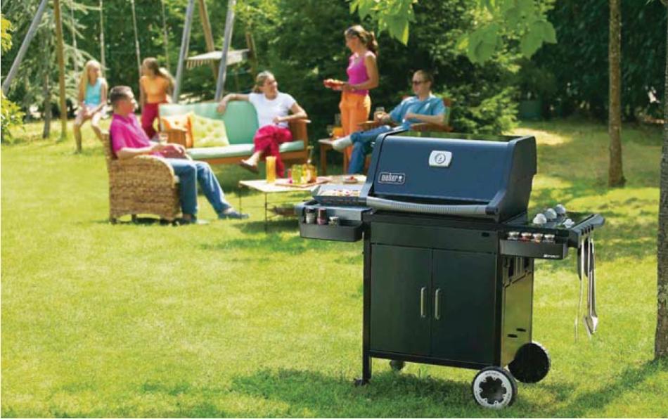 barbecue weber e210