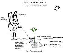 irrigation jardin système