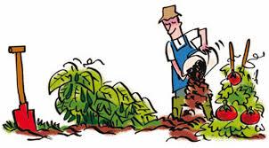comment arroser son jardin potager