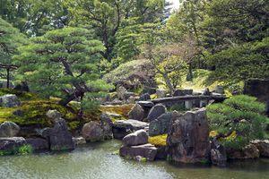 système d'irrigation jardin
