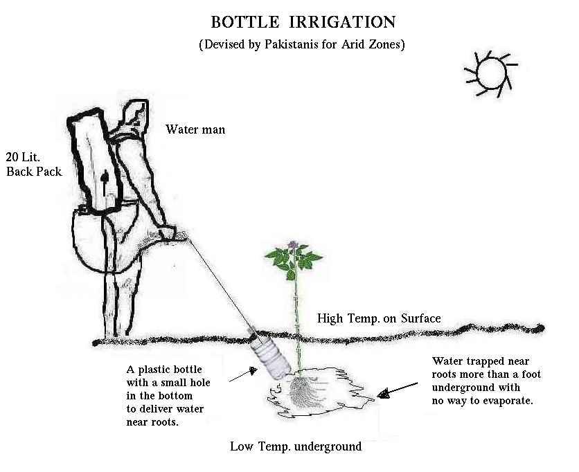 irrigation automatique au jardin
